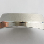 Omega f300 Seamaster Steel (198.0018)